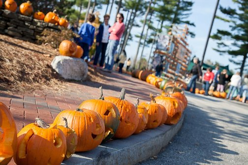 The 2012 Camp Sunshine Pumpkin Festival featured 7,658 lit jack-o-lanterns and raised $80,175 to help sick children and their families
